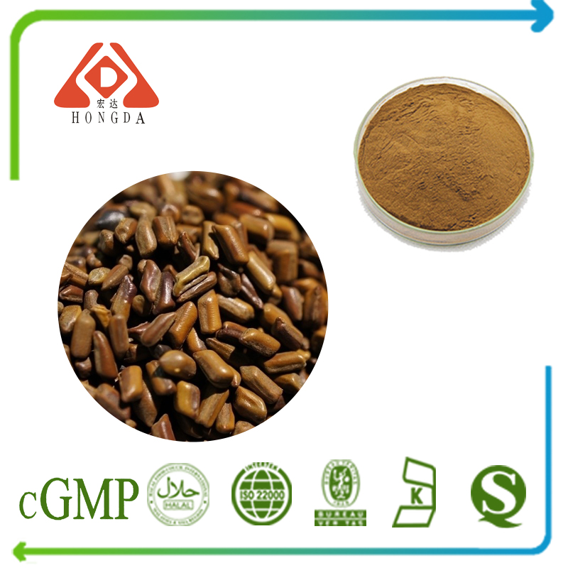 Cassia Seed Extract 10:1 TLC