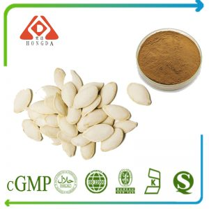 Pumpkin Seeds Extract 4:1 TLC (Brown yellow) (Canada)