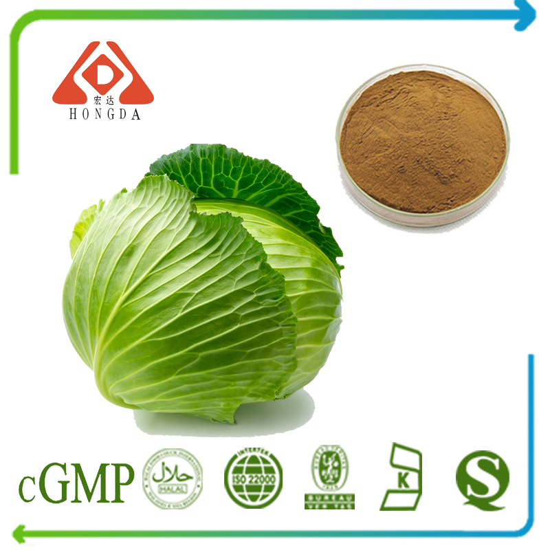 Cabbage Extract 10:1 TLC