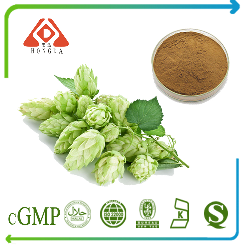 Hops Extract 4:1 TLC