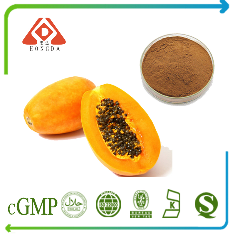 Papaya Extract 4:1 TLC