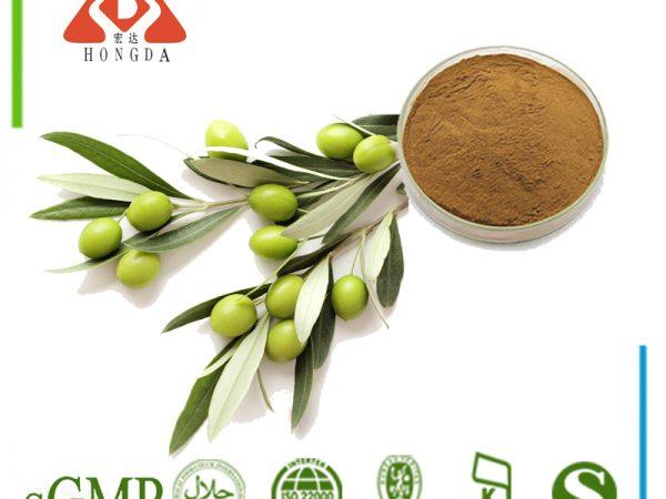 Olive Leaf Extract Oleuropein 20% HPLC