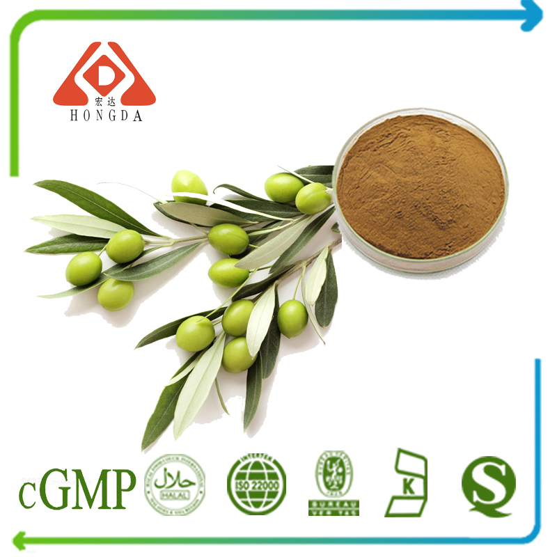 Olive Leaf Extract Oleuropein 20% HPLC