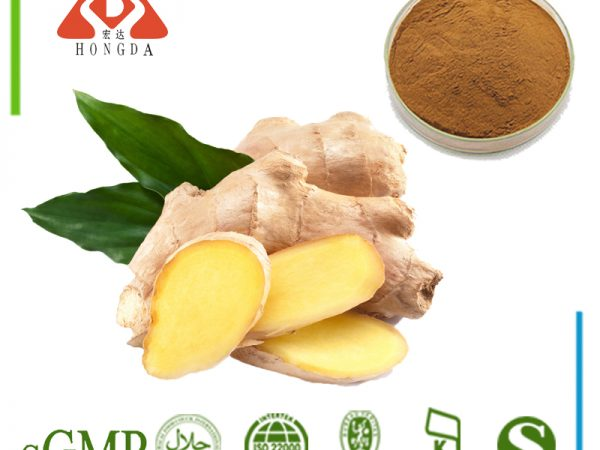 Ginger Extract Gingerol 5% HPLC