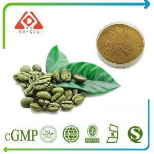 Green Coffee Bean Extract Chlorogenic acids 50% HPLC