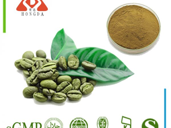 Green Coffee Bean Extract Chlorogenic acids 50% HPLC