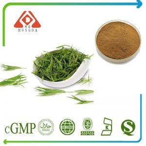 Green Tea Extract Polyphenols 98% UV (EGCG>60%, Catechins>85% HPLC)