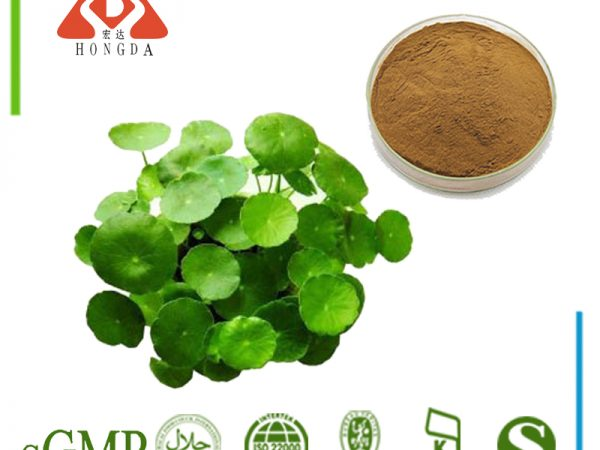 Lotus Leaf Extract 10:1 TLC