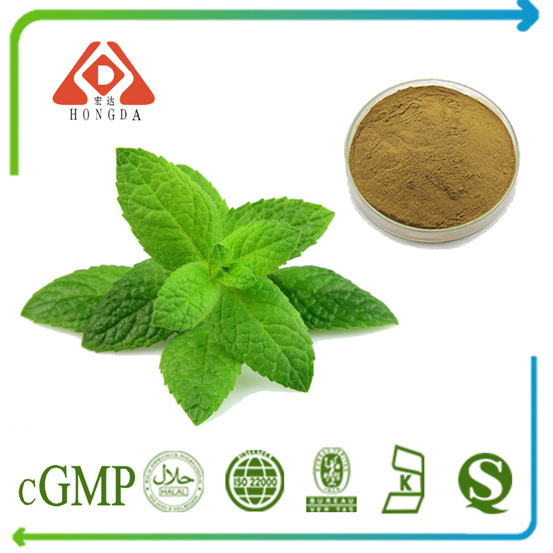 Peppermint Leaf Extract 15:1 TLC