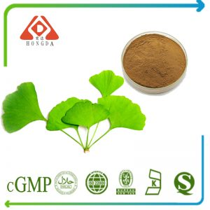 Ginkgo Biloba Leaf Extract 10:1 TLC