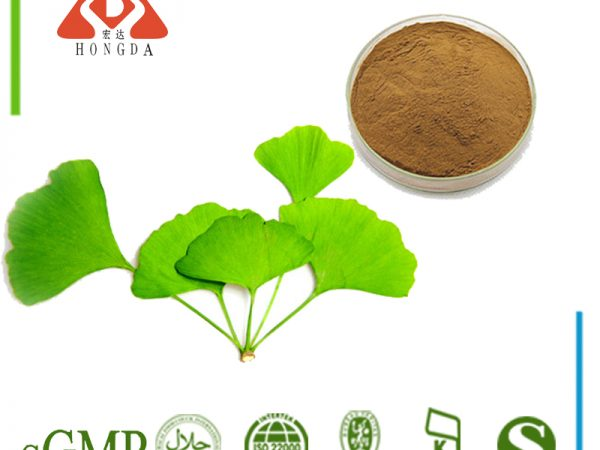 Ginkgo Biloba Leaf Extract 4:1 TLC