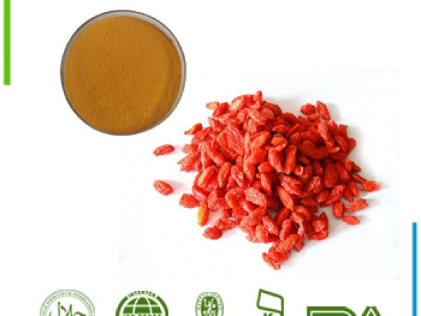 Goji Berry Extract Polysaccharide 50% UV