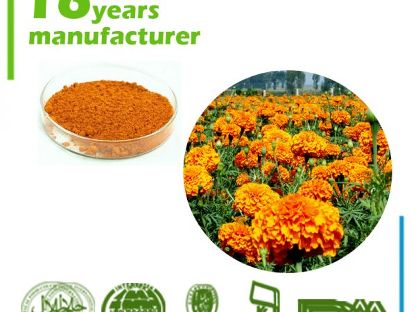 Marigold Flower Extract 10% Lutein HPLC