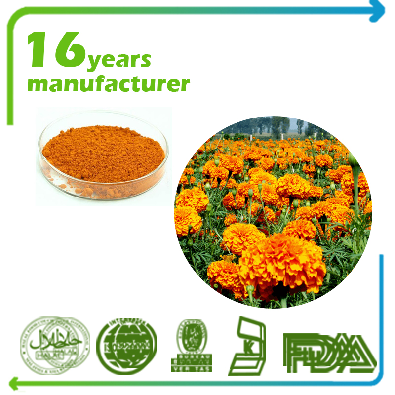 Marigold Flower Extract Lutein 5% Beadlets HPLC
