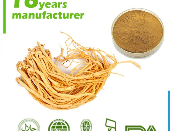 Codonopsis Root Extract 5:1 TLC