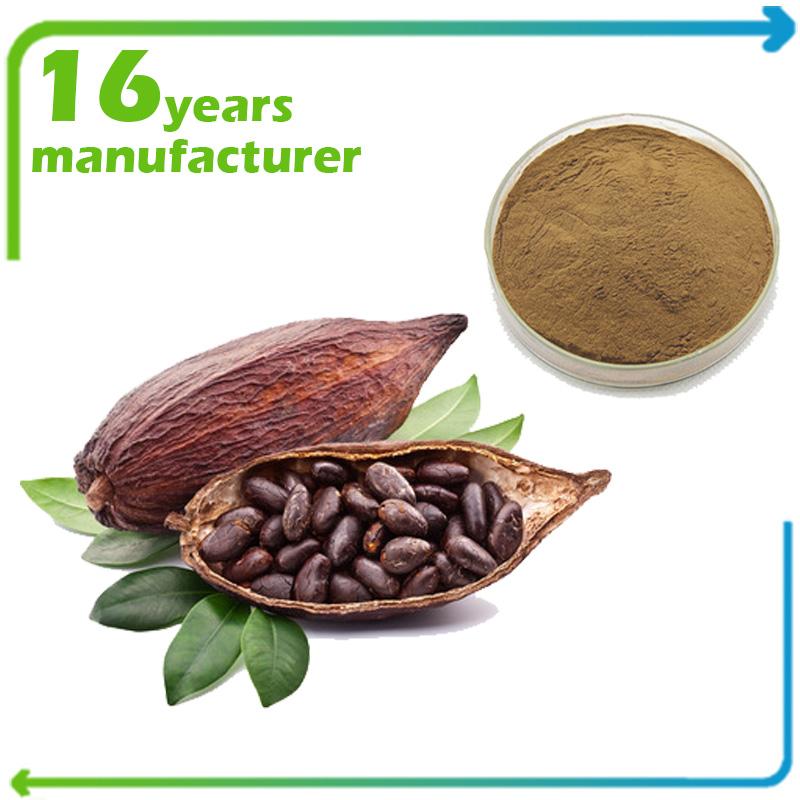 Cocoa Extract Theobromine 20% HPLC