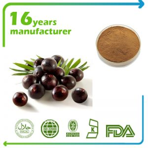 Acai Berry Extract 10:1 TLC
