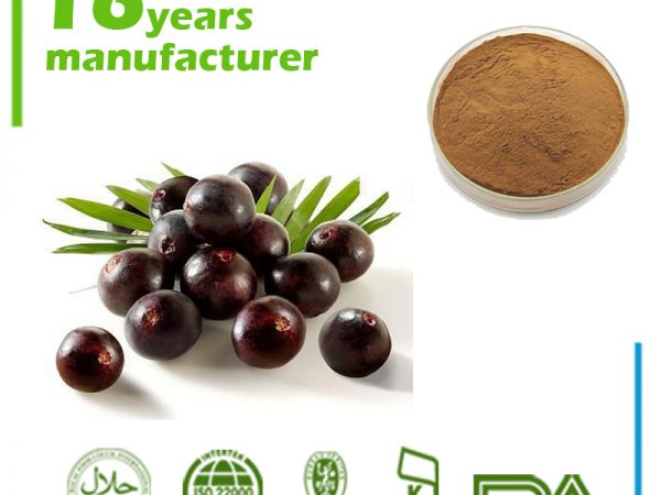 Acai Berry Extract 4:1 TLC