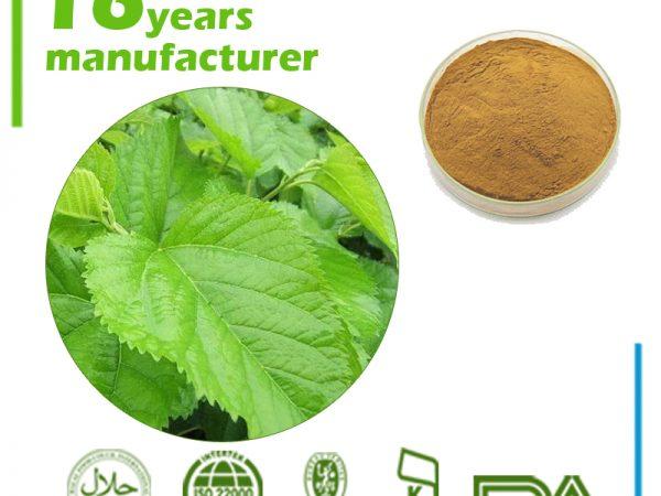 Mulberry Leaf Extract 1-Deoxynojirimycin 1% HPLC (1-DNJ 1%)