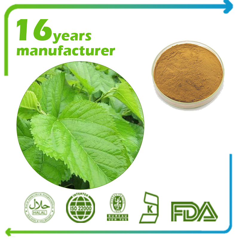 Mulberry Leaf Extract Flavone 1% UV