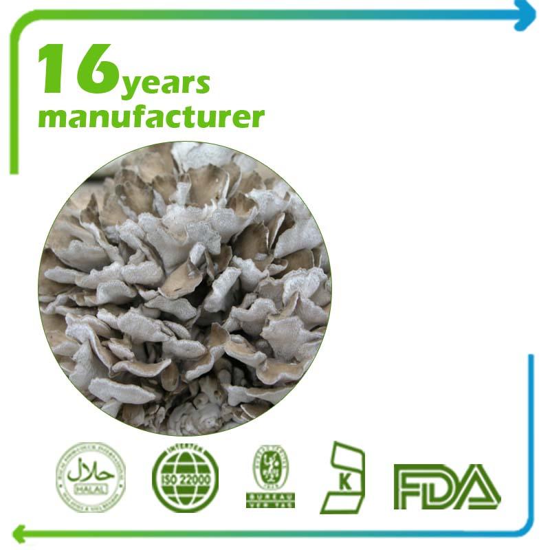 Maitake Mushroom Extract Polysaccharide 50% UV