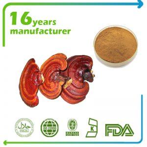 Reishi Mushroom Extract Polysaccharides 30% UV (Canada)