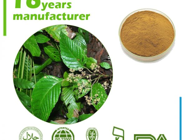 Cissus Quadrangularis Extract 4:1 TLC