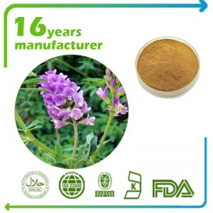 Alfalfa Extract 10:1 TLC