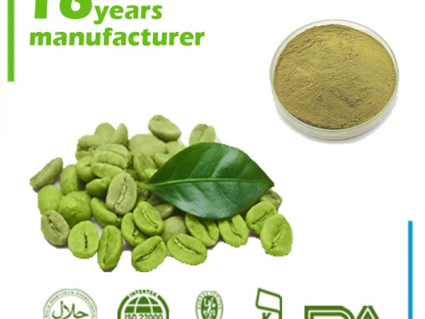 Green Coffee Bean Extract Natural Caffeine (Anhydrous) 98% HPLC