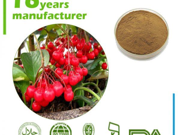 Brassaiopsis Glomerulata Extract 10:1 TLC