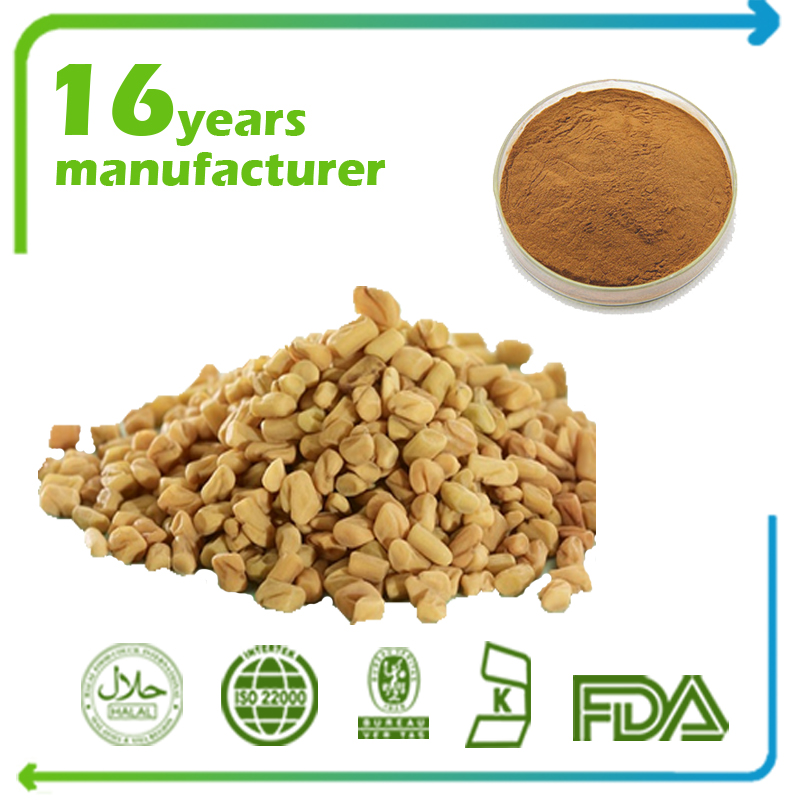 Fenugreek Seed Extract 4:1 TLC