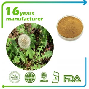 Dandelion Root Extract 10:1 TLC (Canada)