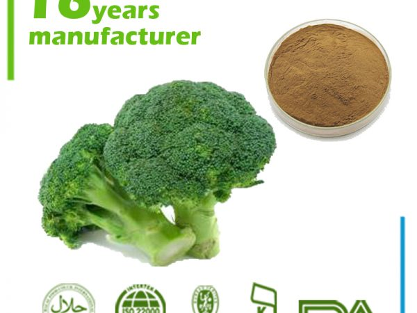 Broccoli Extract 0.1% Sulforaphane HPLC