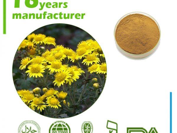 Wild Chrysanthemum Extract 10:1 TLC