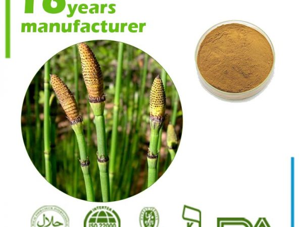 Horsetail Extract Silica 7% UV
