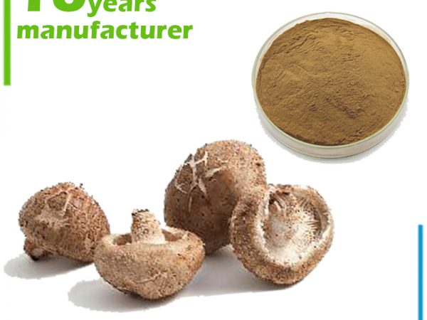 Shitake Mushroom Extract Polysaccharide 60% UV (Lentinus Edodes Extract)