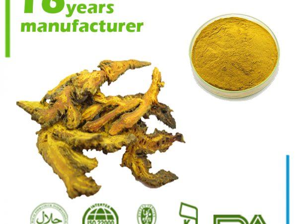 Phellodendron Bark Extract 6% Berberine HPLC