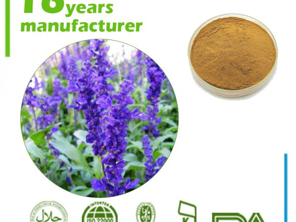 Sage Extract 10:1 TLC