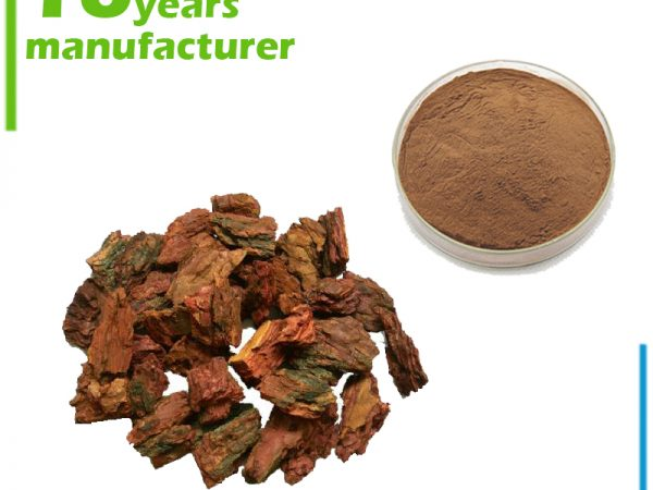 Pine Bark Extract 10:1 TLC