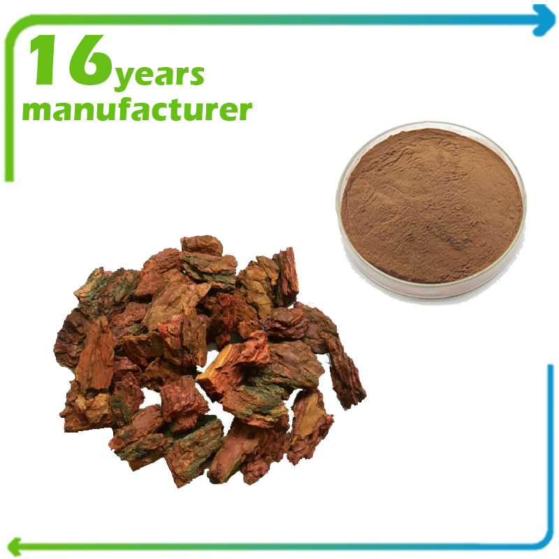 Pine Bark Extract 20:1 TLC