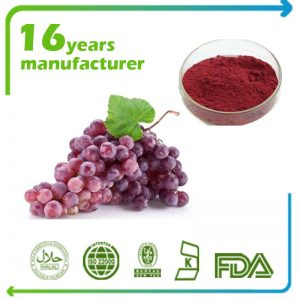 Grape Seed Extract 95% Proanthocyanide UV
