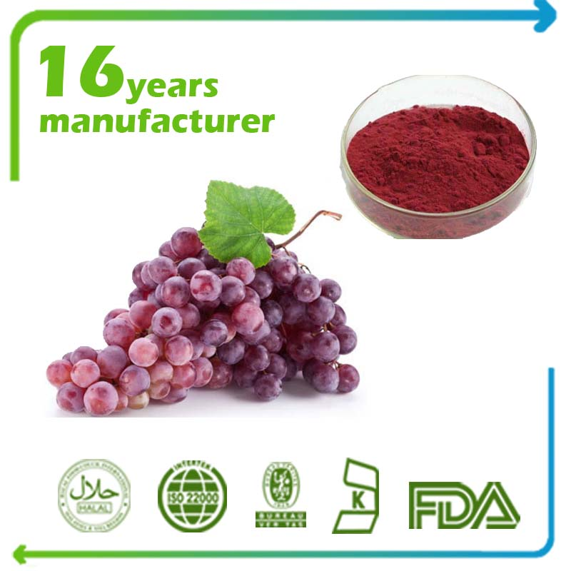 Grape Seed Extract Polyphenols 85% UV