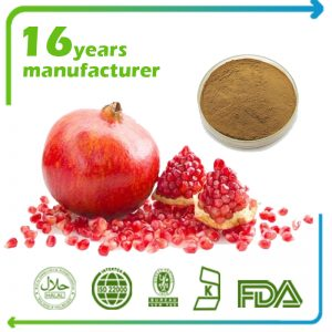 Pomegranate Peel Extract Ellagic Acid 40% HPLC
