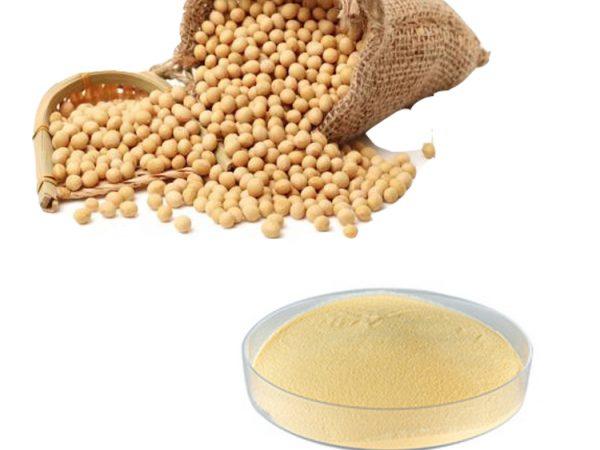 Soybean Extract Total Isoflavones 40% HPLC