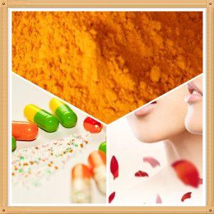 Coenzyme Q10 98% HPLC (MFG: Shenzhou) (COQ 10)
