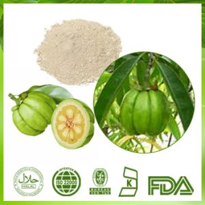Garcinia Cambogia Extract Hydroxycitric Acid (HCA) 60% HPLC