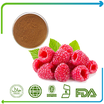 Raspberry Ketone 99% HPLC