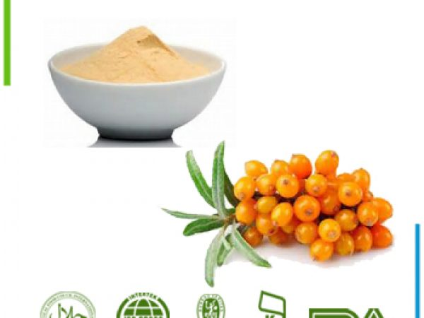 Sea Buckthorn Berry Extract Flavone 5% UV