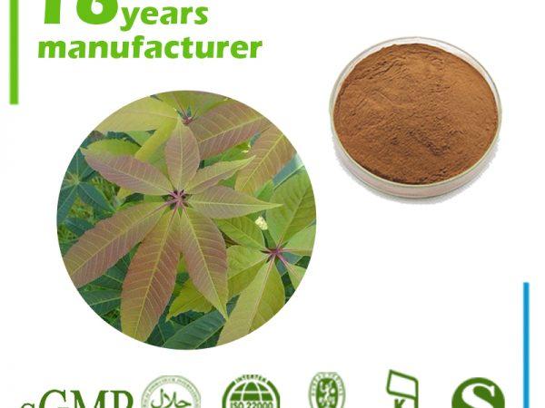 Horse Chestnut Extract Aescin 20% UV