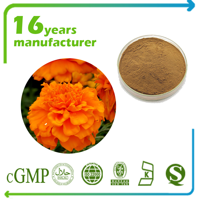 Marigold Flower Extract Lutein Beadlet 5% HPLC